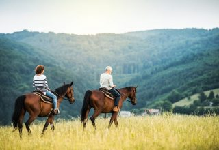 A happy senior couple riding horses on a meadow in nature. Copy space.